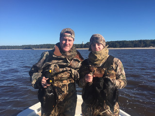 Guided Sea Duck Hunts in South Carolina: Myrtle Beach, Georgetown, Pawleys Island, Charleston, Murre