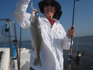 Sea Trout in the Fall South Carolina