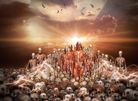 Siehe der Retter ist geboren, der König der Juden…