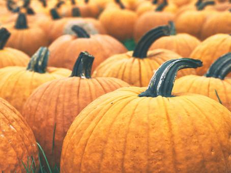 Autumn Lessons Uploaded