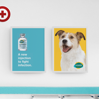 Convenia Poster in clinic.png