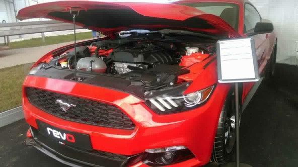Bonnet Show Brace - New Mustang