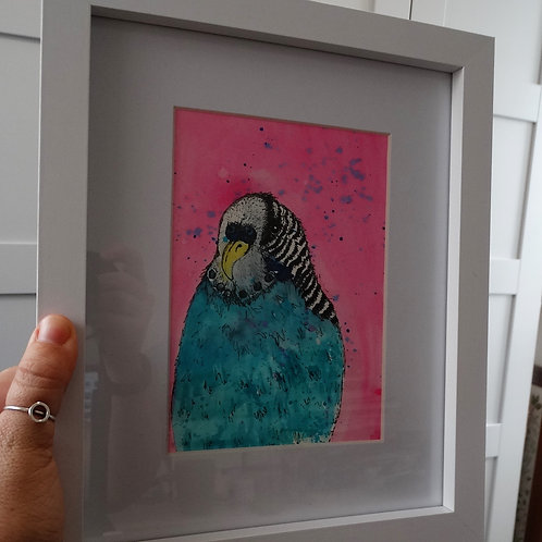 Budgie Watercolour Painting