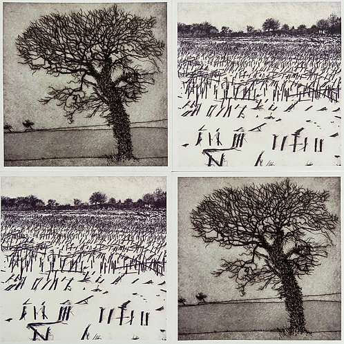 Set of 4  Printed Greeting Cards Maize Field & Oak Tree