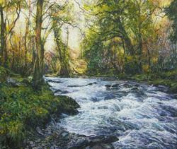River Walkham 5 - 1603
