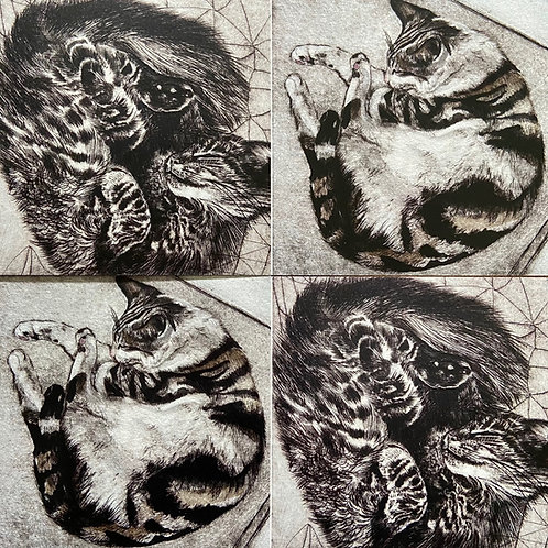 Set of 4  Cats Printed Greeting Cards Faith Chevannes