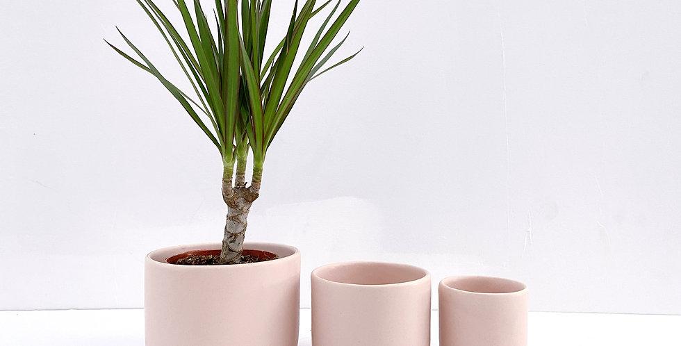Freckled Pink - Tandem Ceramics