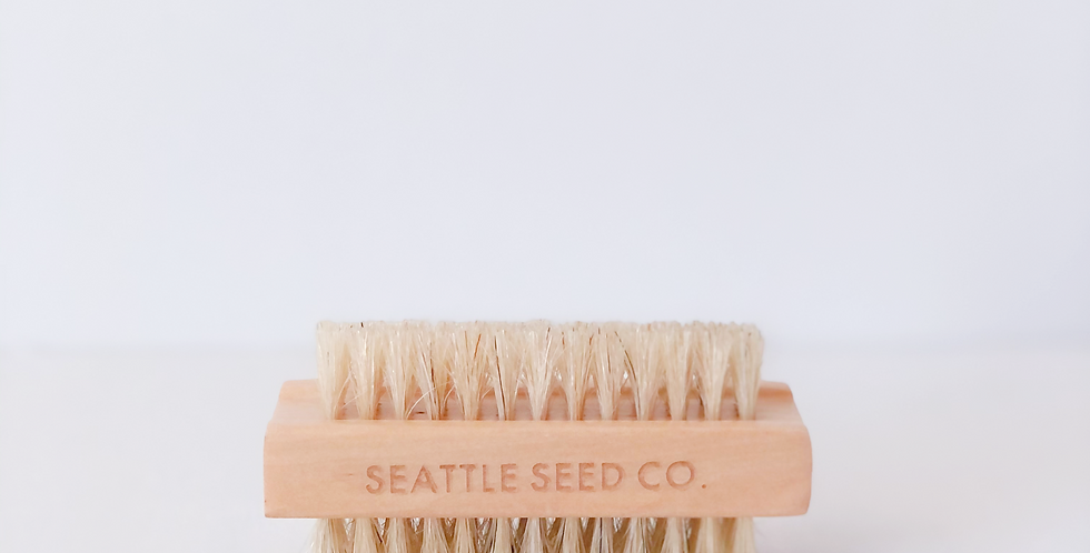 Seattle Seed Co. Nail Scrubber