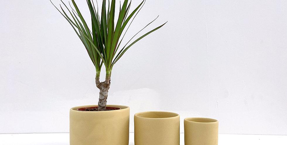 Goldenrod - Tandem Ceramics