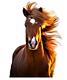 Aliment chevaux sport , loisir