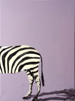 zebra 1/2