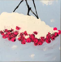 birdflowers in snow