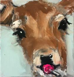 lolly bambi