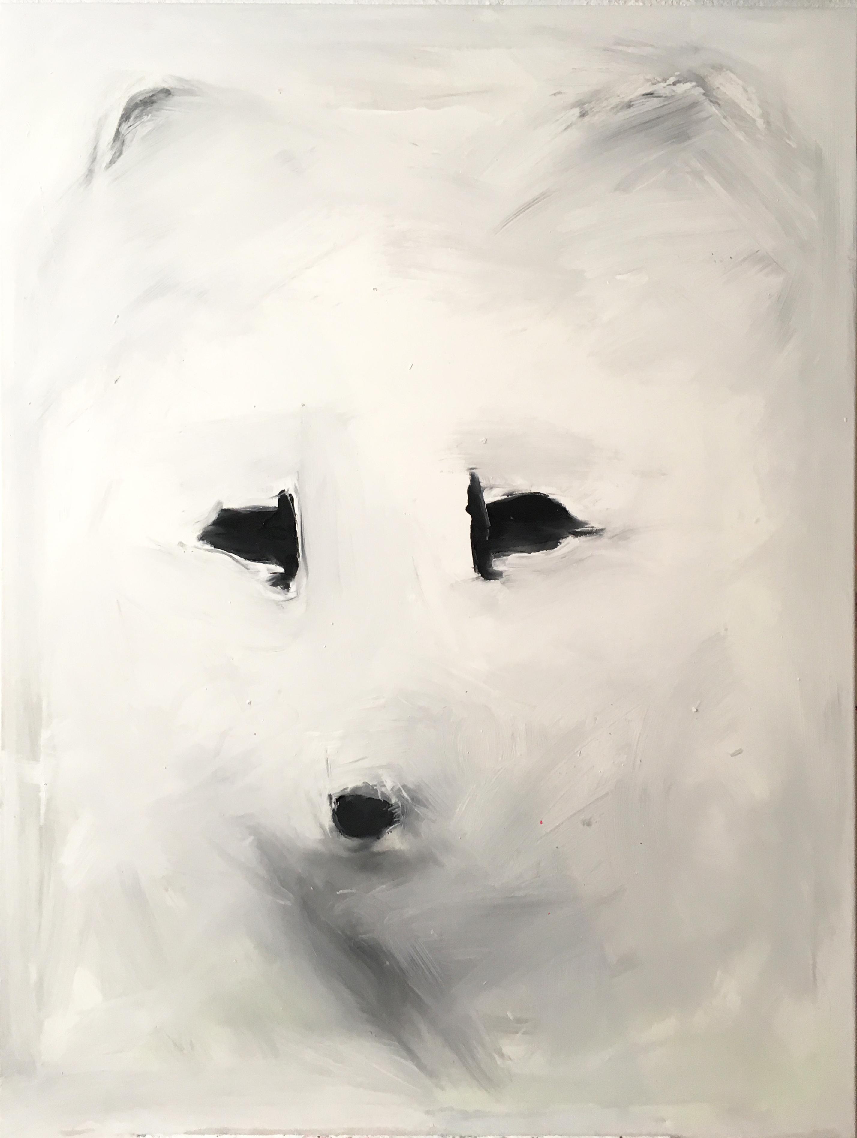 Foxi Snow