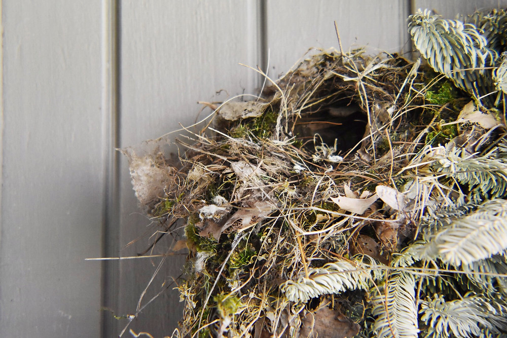 Nest in a Wreath