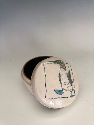 "Jar with blue footed booby 2""x3"""