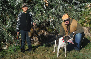 Pointer Hunting Dog Club Member With Brittany Pointing Dog
