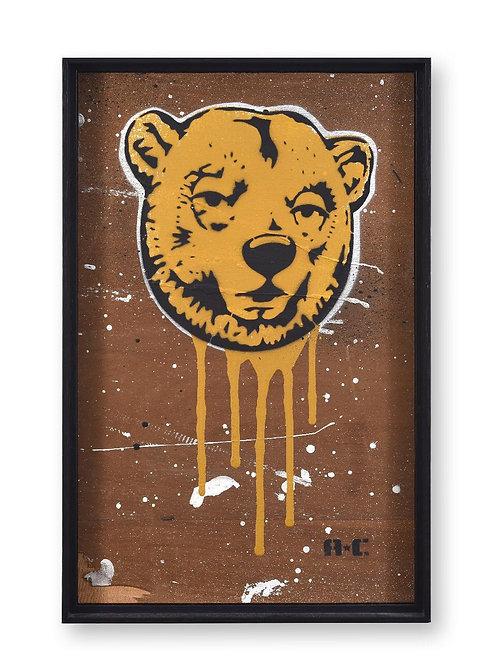 Urso Alto Contraste