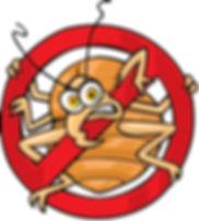 no bugs.JPG