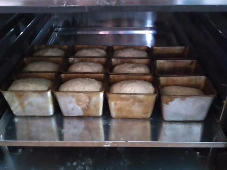 Благодаря господдержке в селе Унда открылось производство хлебобулочных изделий