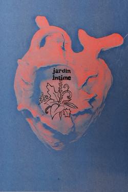 Série -Muscle cardiaque