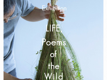 """Exhibition """" LIFE, Poems of the Wild """"  July 28 ~ Aug 8, 2021"""
