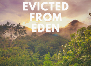Evicted from Eden