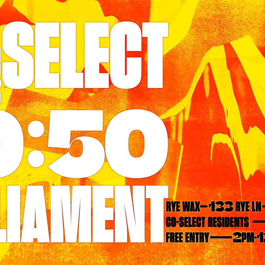 Co-Select x 50:50 Parliament at Rye Wax w/ Special Guests