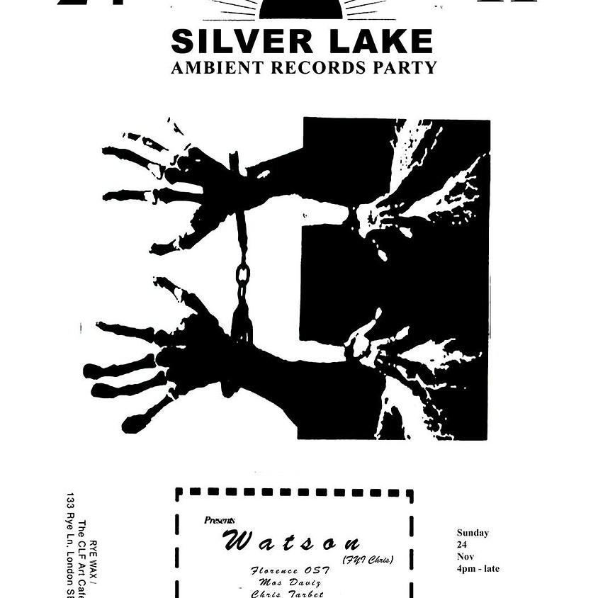Silver Lake Ambient Party