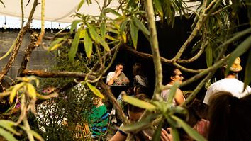 CLF Art Lounge & Roof Garden - Roofgarden