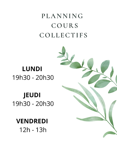 PLANNING COURS.png