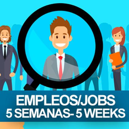 Job Posting for $100 for 5 weeks/ Ofrezco Trabajo por $100 x 5 Semanas