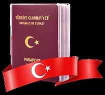 passaport-mob.png