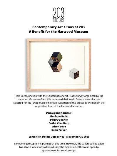 Contemporary Art _ Taos at 203 A Benefit