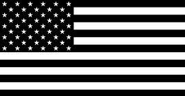 USA BLACK FLAG.jpg