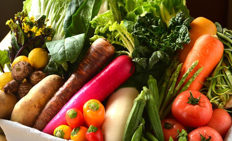 野菜 イメージ2.JPG