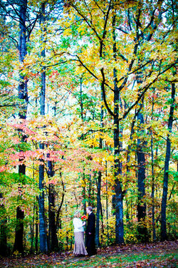 Fall Bliss