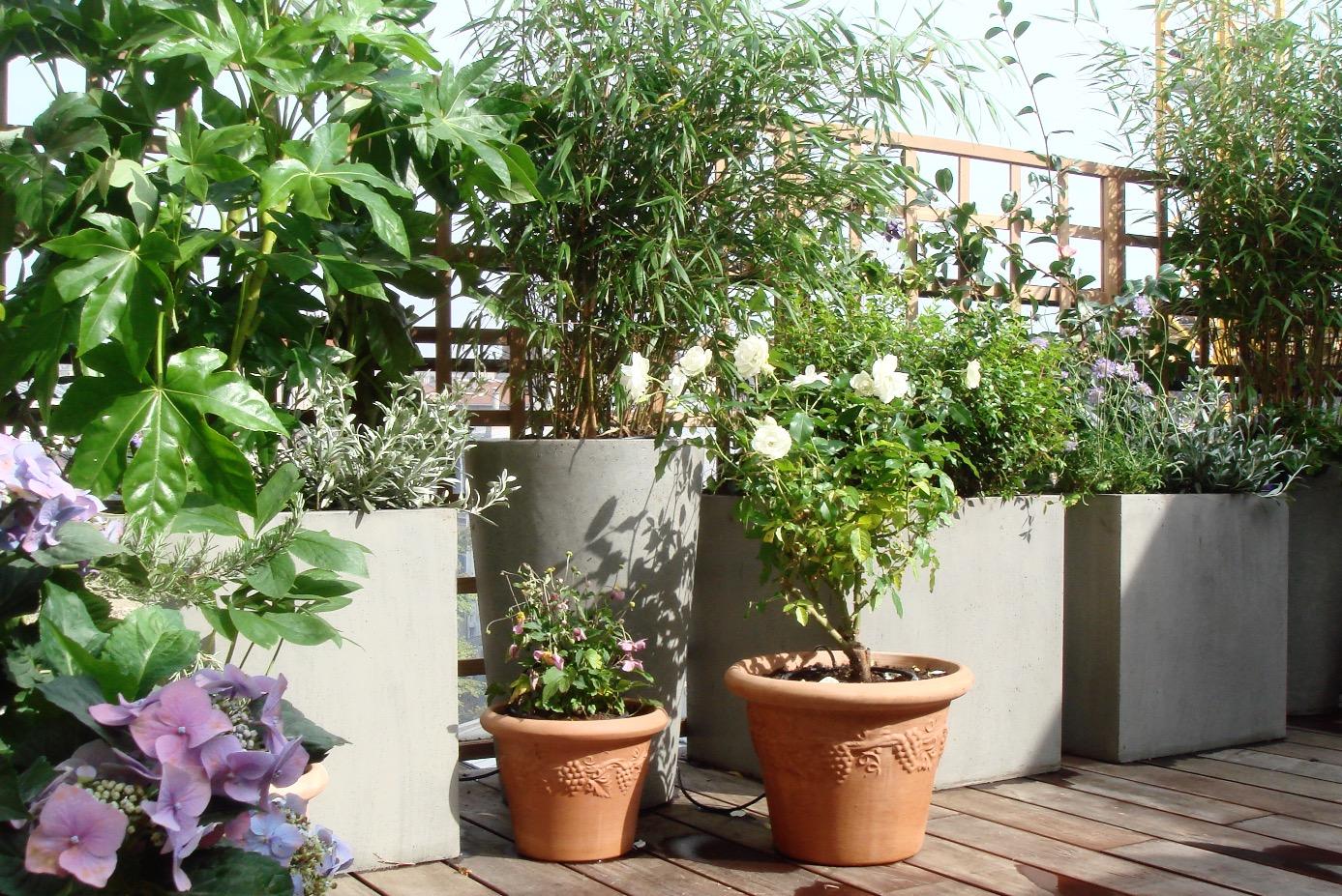 l'aurey des jardins, paysagiste paris, balcon terrasse jardin