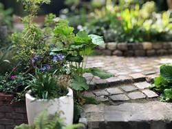 jardinmalakoff02