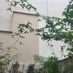 Jardintemple12