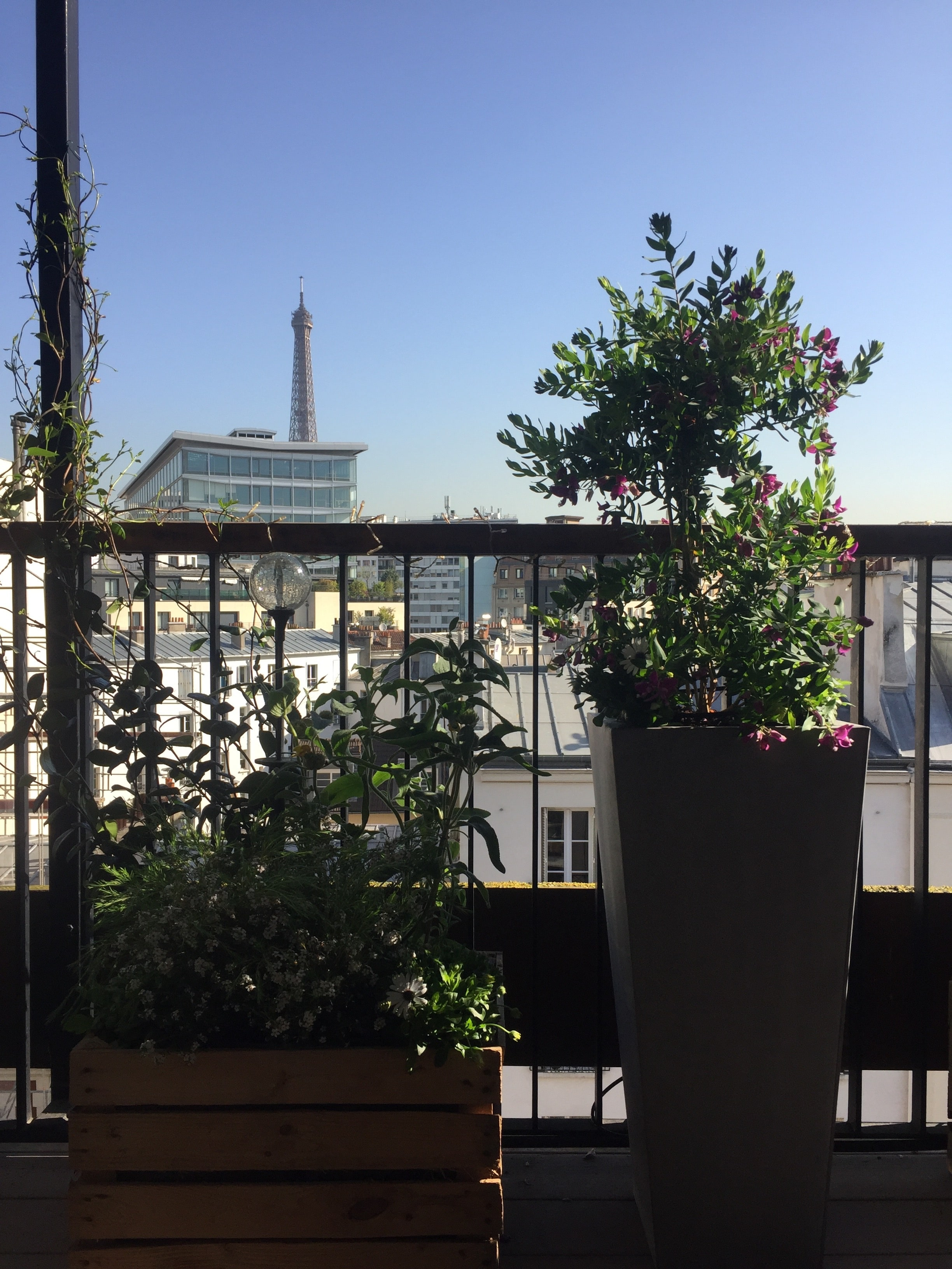 paysagiste balcon paris