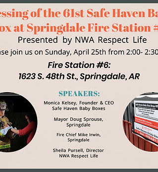 Safe Haven Baby Box - Promotional Flyer.