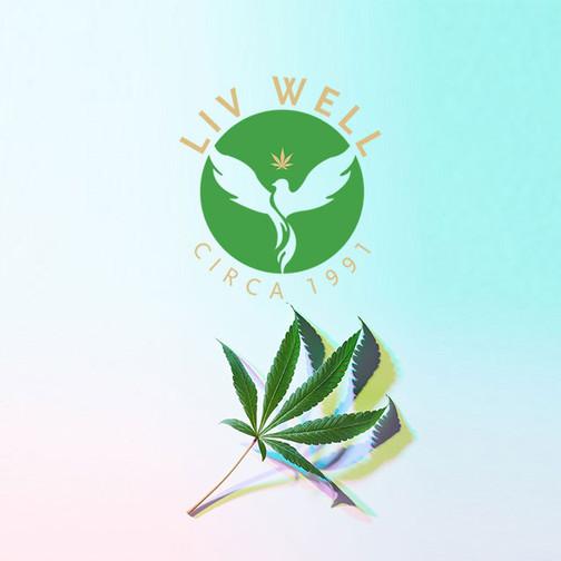 LivWell: Enlightened Health