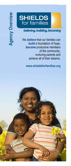 SHIELDS Overview (Brochure)