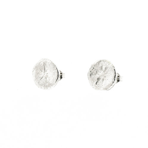 Medium North Star Earrings