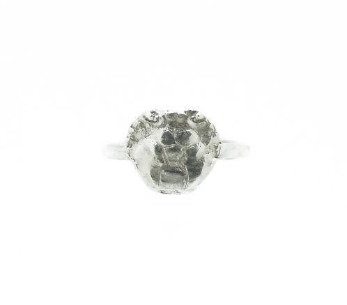 Crabs Head Ring