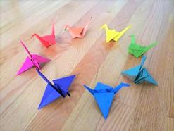 Cranes by Palak and Shuruithi