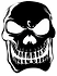 SKULL-100-HIGH-RESOLUTION black.png