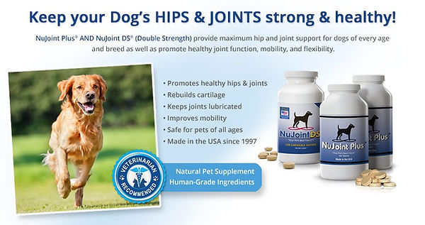 nujoint-plus-and-nujoint-ds-supplements4