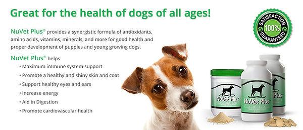nuvet-plus-pet-supplements-vet-recommend